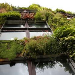 bio-ecologisch bouwen - duurzaam bouwen