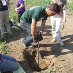 Bodemonderzoek en de kosten ervan � bodemanalyse of bodemonderzoek